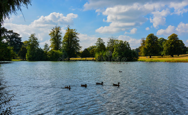 The lake at Petworth House. A sunny September day at the Petworth House lake royalty free stock images