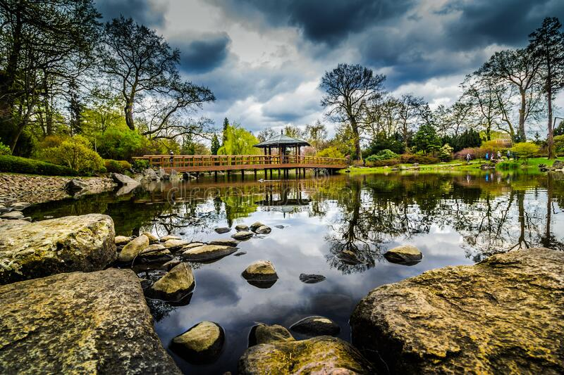 Lake in a picturesque park stock image