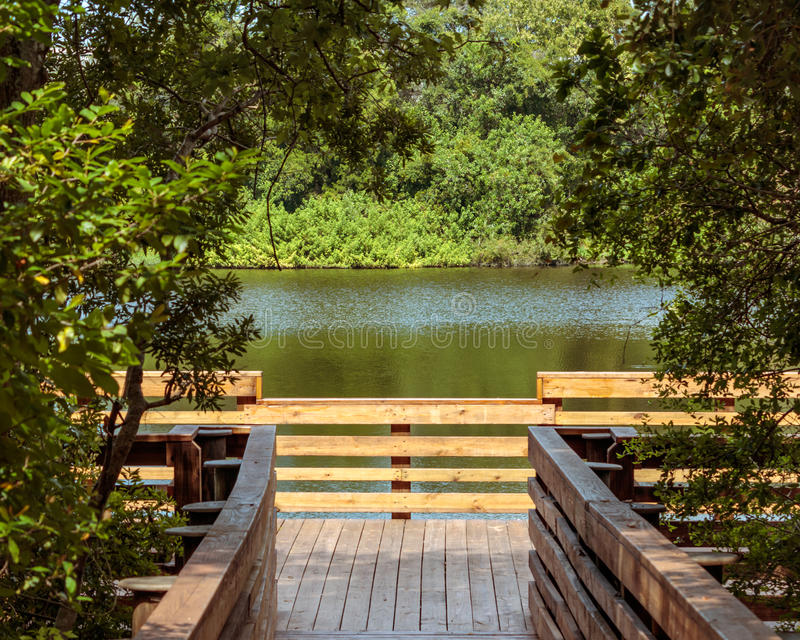 Lake pier access. Moccasin Lake Nature Park, Clearwater, FL, lake access wooden pier, lake view stock image