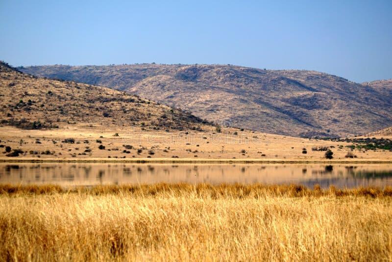 Dam in Pilanesberg National Park stock photo