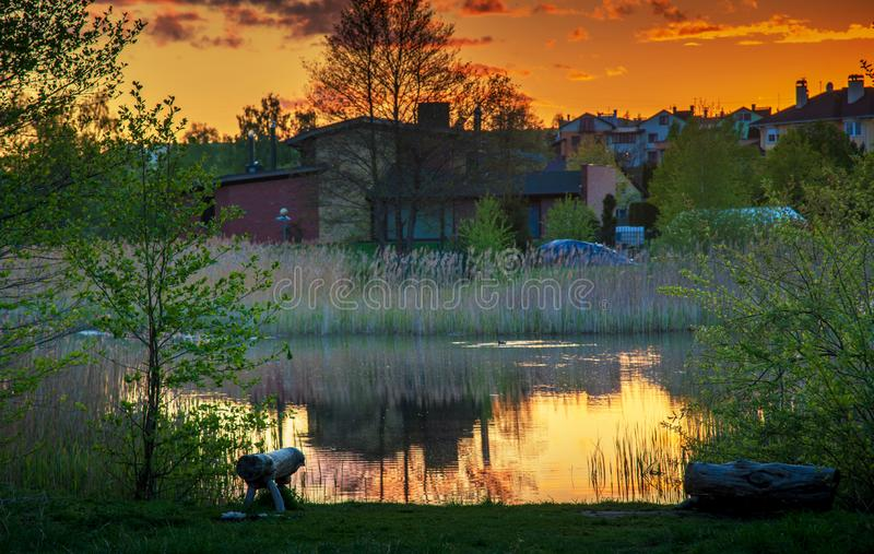 Sunset near lake in a city. Lake pond and trees with houses reflected in water, sunset sky