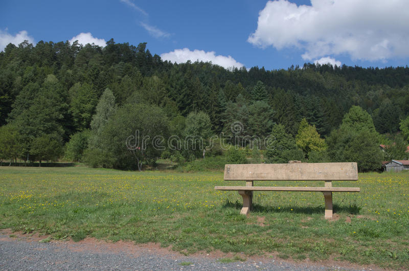 Wooden park bench at a park. Wooden park bench against a natural forest background stock photo