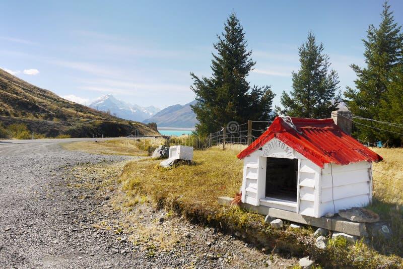 Lake Pukaki Trail, New Zealand royalty free stock photography