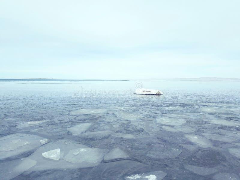 lake qinghai fotografering för bildbyråer
