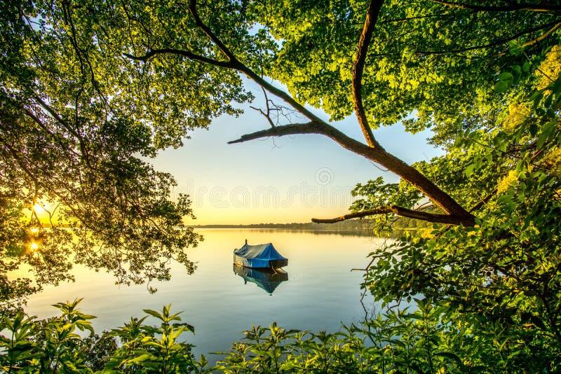 Lake with reed and sailboat at sunrise royalty free stock photo