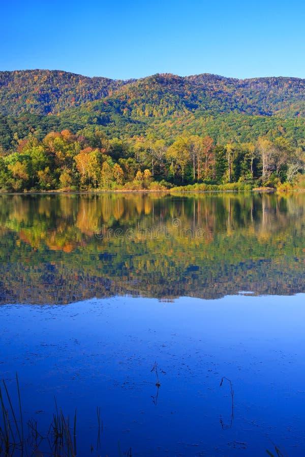 Free Lake Reflection Royalty Free Stock Images - 11563069