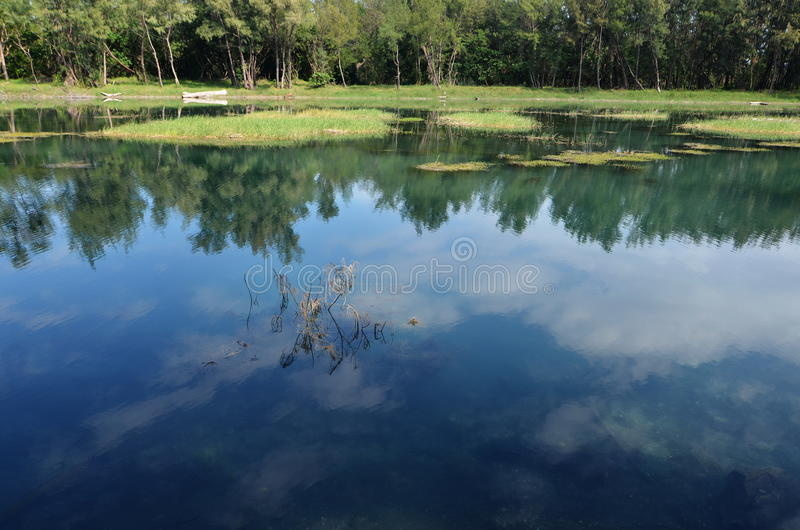 Download Lake reflection stock photo. Image of scenery, reflection - 28427056