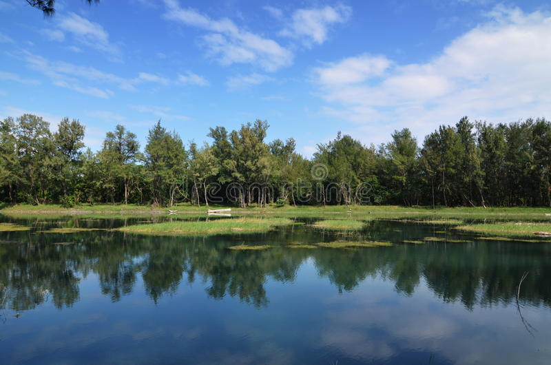 Download Lake reflection stock image. Image of clear, scene, panoramic - 28427075
