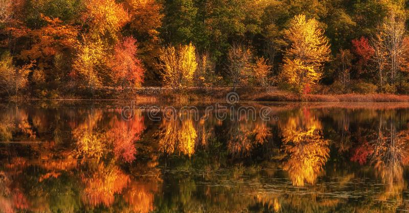 Lake with reflection of colorful autumn trees in the water. royalty free stock photography