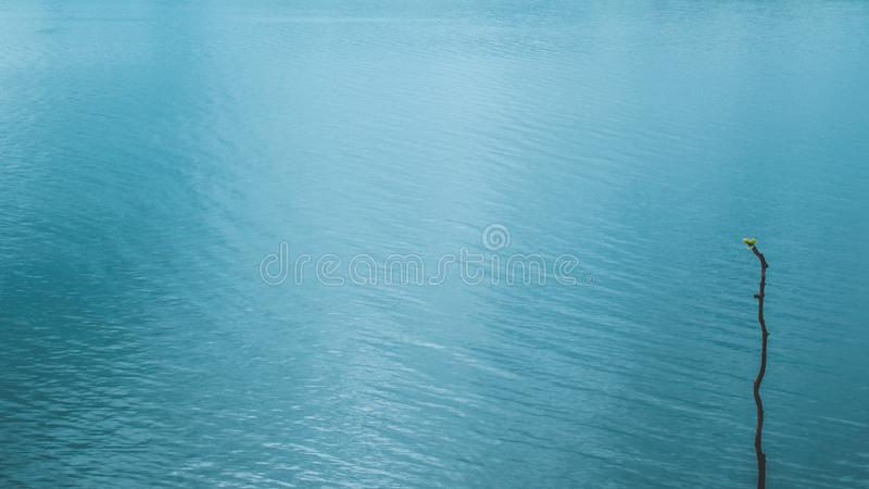 Lake  and reflection on water surface, waving move . texture of movement throught the soft wind A foggy morning scene .blue tone.  stock photo