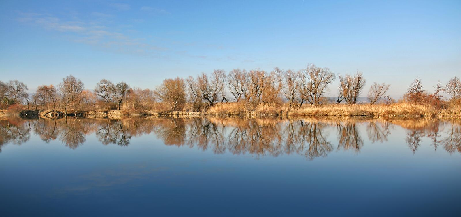 Download Lake with reflections stock image. Image of spring, flora - 10876285