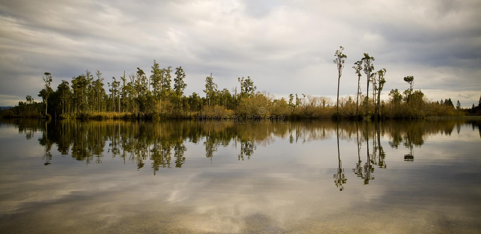 Lake Reflections. Still reflective waters with forest island royalty free stock photography