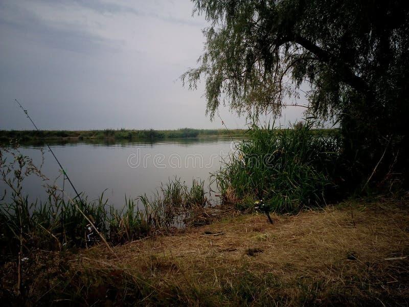 Lake river fishing carp fishing tourism royalty free stock photo