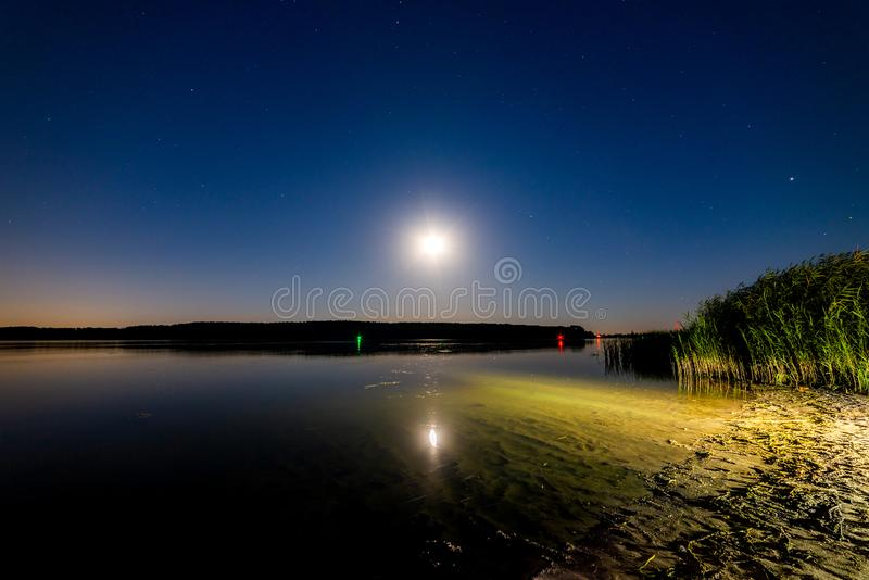 Lake or river sand shore with trees and dark blue starry sky and city light on background. Tranquil nature night landscape royalty free stock photo