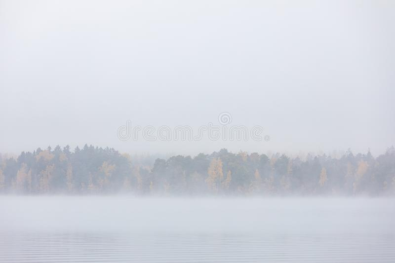 Lake scape and opposite shore forest at dawn. Lake scape and foggy opposite shore forest at dawn royalty free stock photos