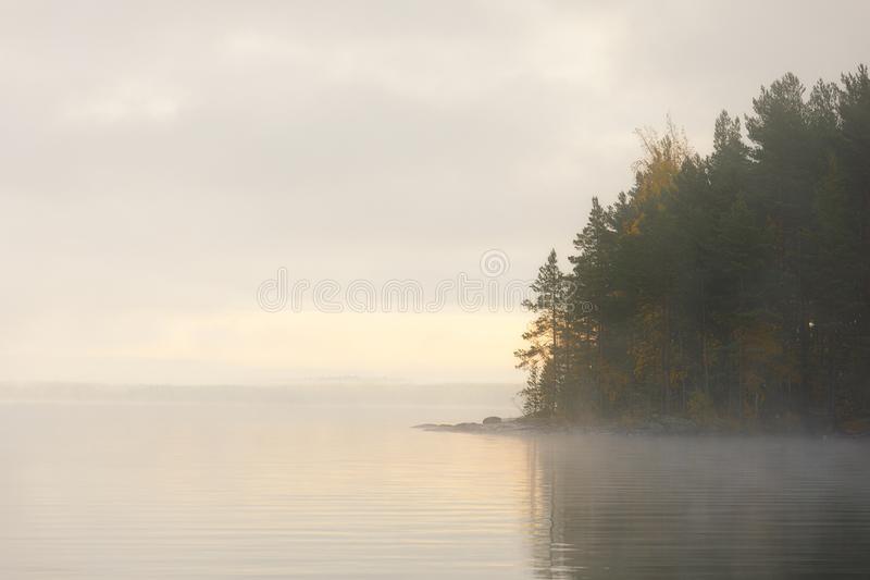 Lake scape and opposite shore forest at dawn. Lake scape and foggy opposite shore forest at dawn royalty free stock image