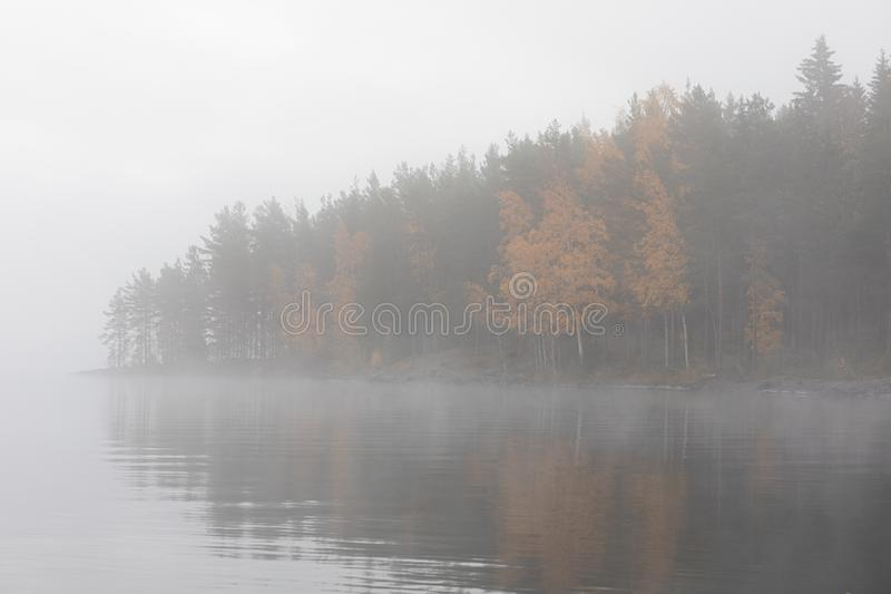 Lake scape and opposite shore forest at dawn. Lake scape and foggy opposite shore forest at dawn royalty free stock photography