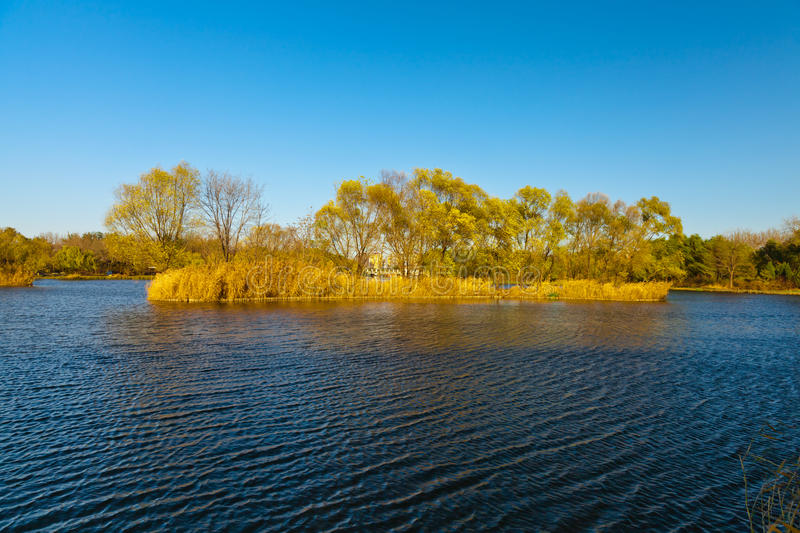 Download Lake scenery stock image. Image of reflection, ripples - 23066261