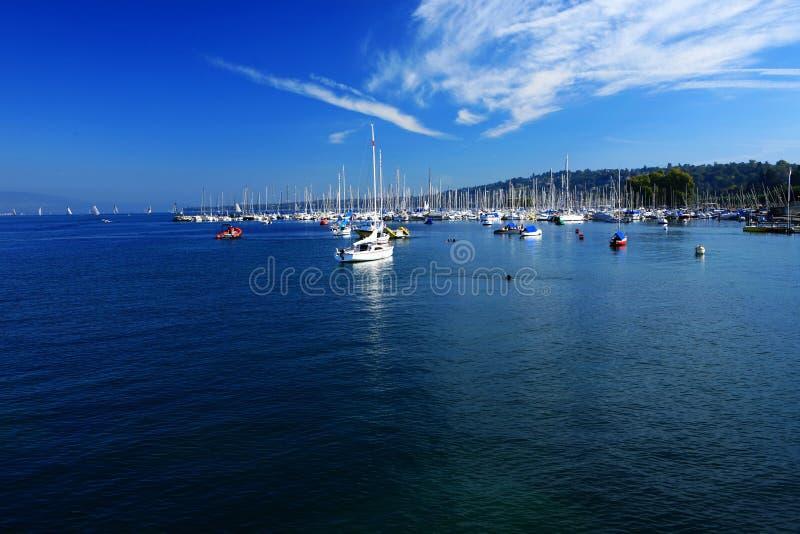Download Lake scenery stock image. Image of skies, swiss, geneva - 7111259
