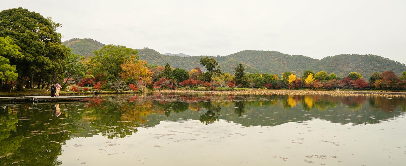 Lake scenery at autumn in Kyoto, Japan. Lake scenery with autumn trees in Kyoto, Japan royalty free stock image