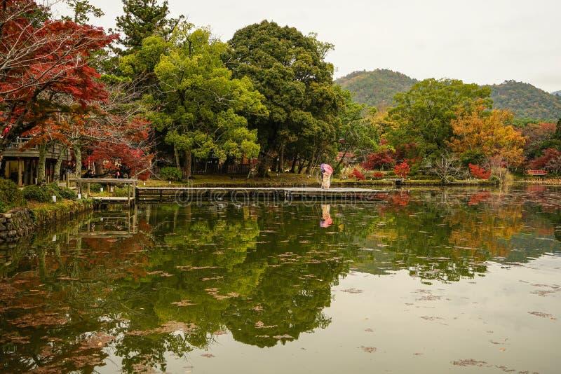 Lake scenery at autumn in Kyoto, Japan. Lake scenery with autumn trees in Kyoto, Japan royalty free stock photo