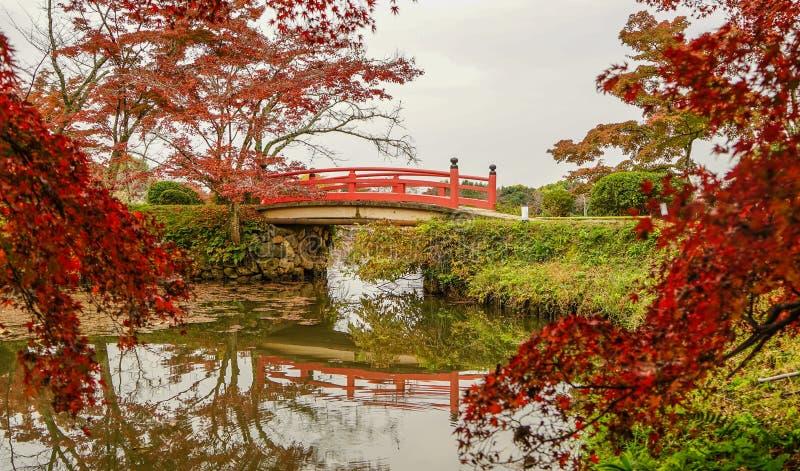 Lake scenery at autumn in Kyoto, Japan. Lake scenery with autumn trees in Kyoto, Japan stock images