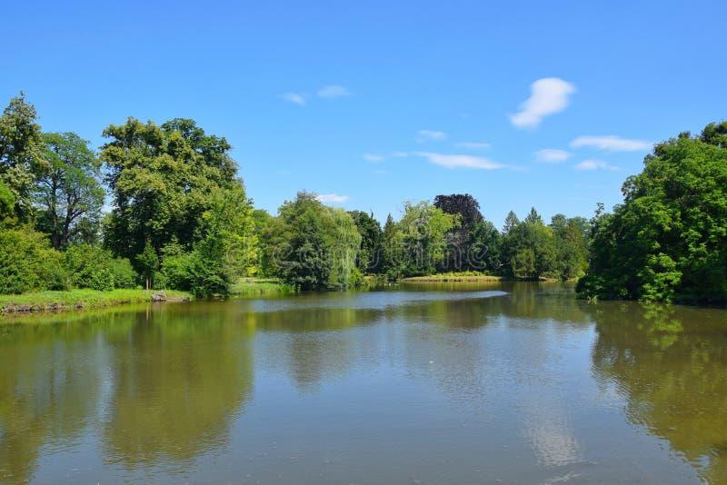 Lake Scenery Natural Background Czech Republic. Portrait royalty free stock photography