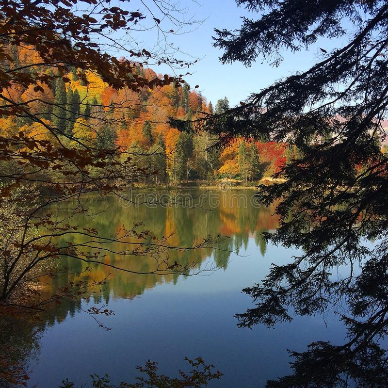 Free Lake Secret Garden In Turkey Royalty Free Stock Photo - 48332045