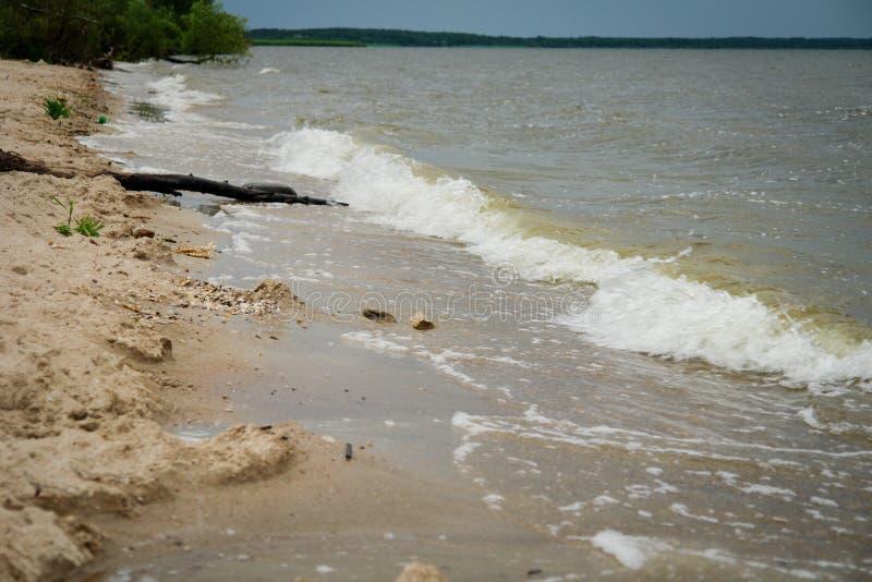 Lake shore Waves royalty free stock photo