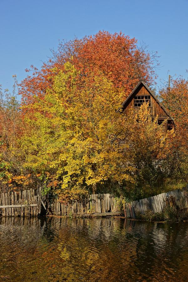 Yellow and red trees and a wooden house on the shore of the lake royalty free stock image
