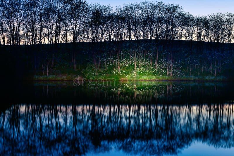 Download Lake shore stock image. Image of serene, scenic, reflection - 32823787