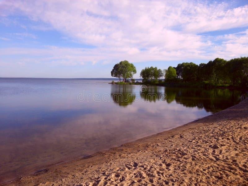 Lake shore at summer royalty free stock photography