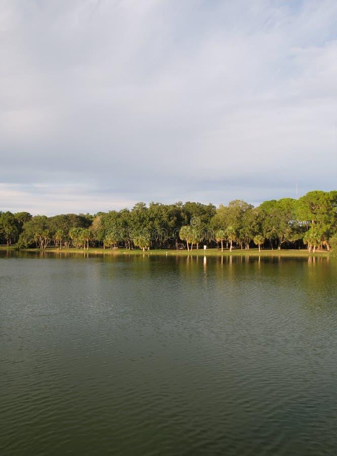 Download Lake Shoreline stock photo. Image of peaceful, tree, reflected - 4047772