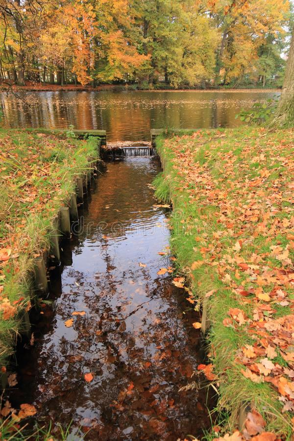 Lake with small water dam and autumn leaves stock photos