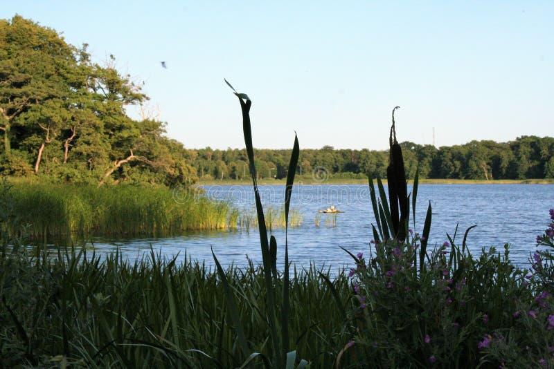 The lake of Soro in sealnd denmark. Landscape of Sor� lake in denmark, zealand stock photo