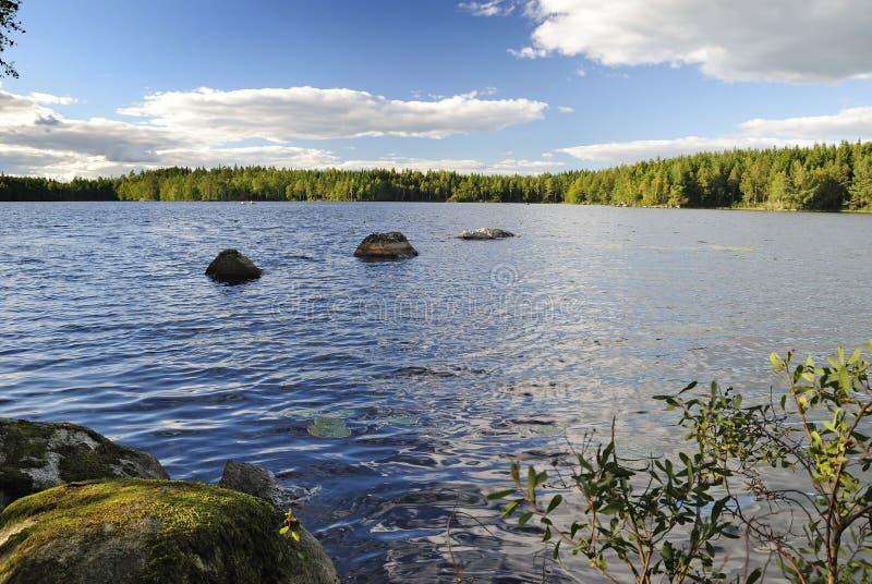 Lake summer beautiful nature royalty free stock photography