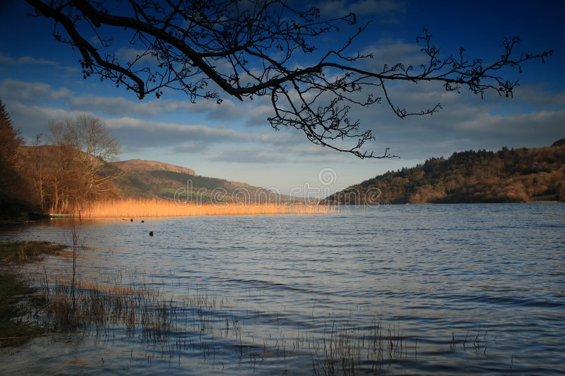 Download Lake On Sunny Day In Ireland Stock Photography - Image: 6359302