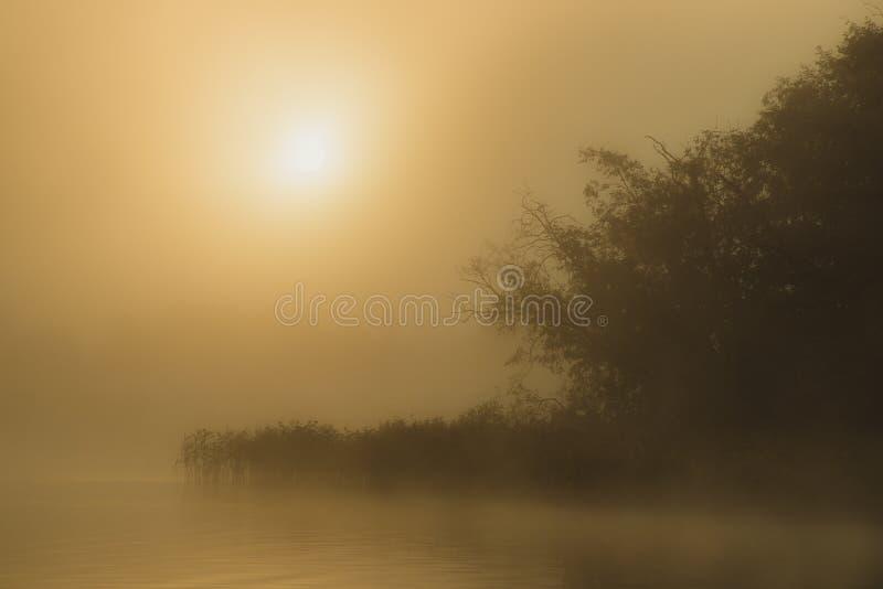 Lake sunrise wallpaper stock photos