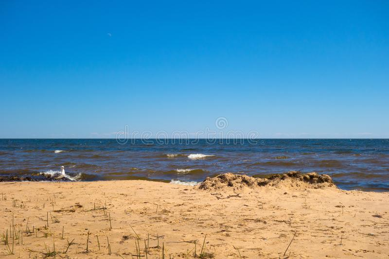 Lake Superior в летнем времени стоковое фото rf