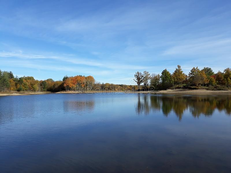 Lake surrounded by trees. royalty free stock photography