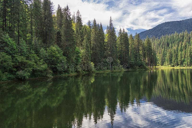 Lake Synevyr in Carpathian mountains, Ukraine. Beautiful mountain lake surrounded by dense green forest stock photos