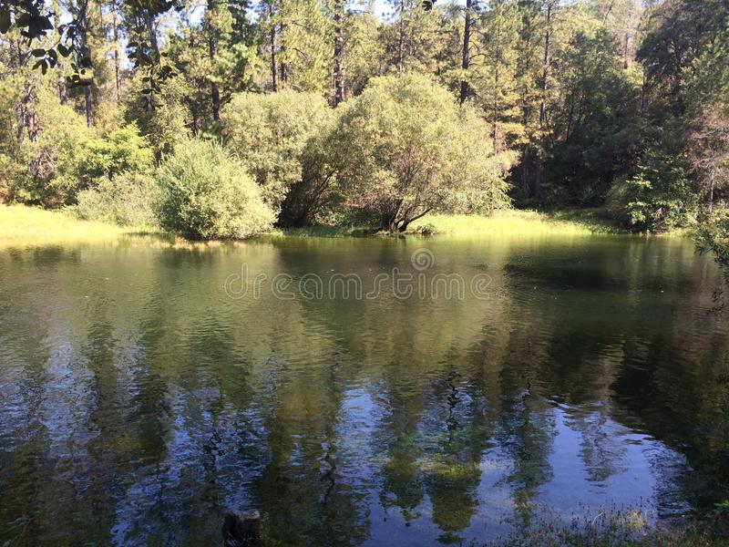 Lake Tabeaud Reflections stock photo