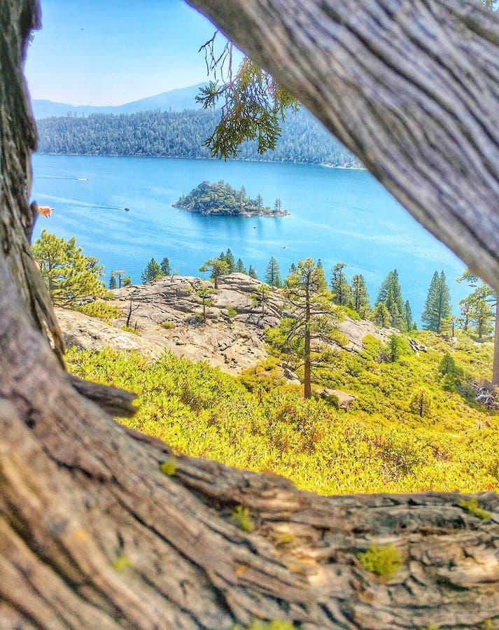 Lake Tahoe royaltyfri bild