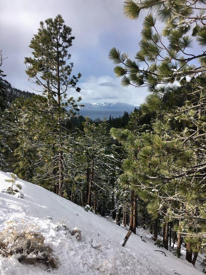 Lake Tahoe fotos de stock