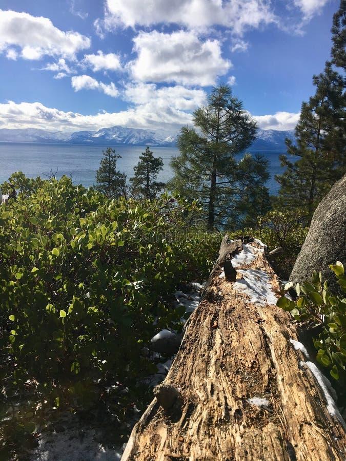 Lake Tahoe foto de stock royalty free