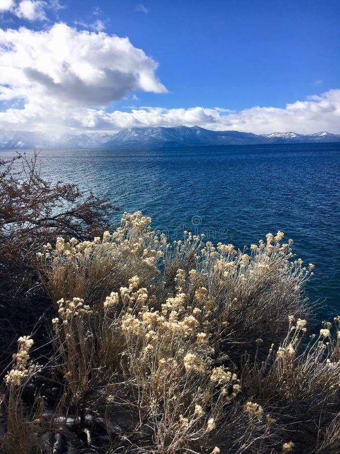 Lake Tahoe imagens de stock royalty free