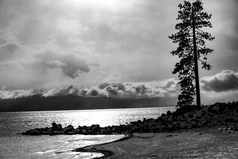 Lake Tahoe vintersolnedgång B+W royaltyfria foton