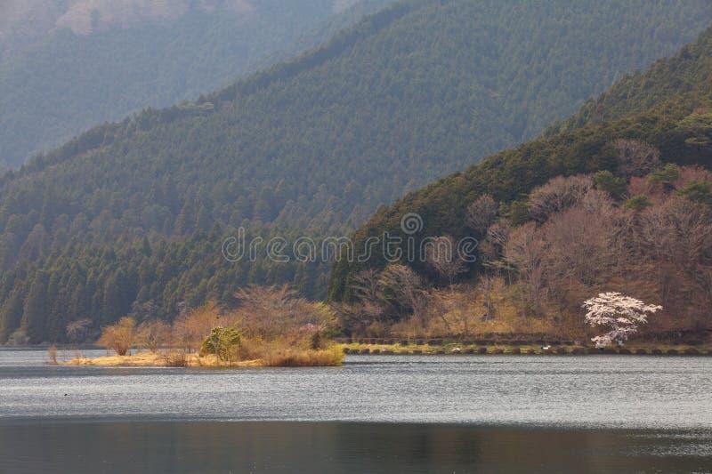 Lake tanuki. Landscape of lake tanuki at fujinomoya , japan stock photos