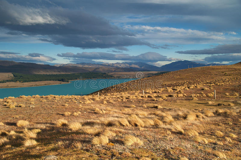Download Lake Tekapo stock image. Image of fall, cloud, peak, bush - 24447963