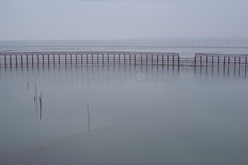 Calm lake, some water fences. On the lake, there are some fences that look very calm royalty free stock photo